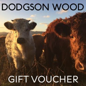 Dodgson Wood - gift voucher